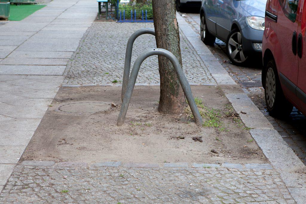 Baumscheibe vor der Pflanzaktion © Rico Prauss
